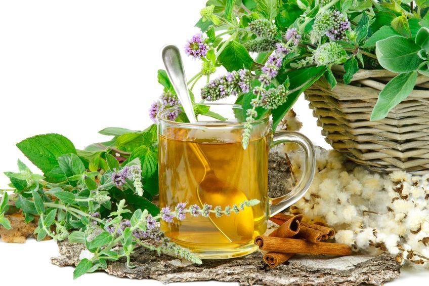 Savoir maigrir les bienfaits minceur des plantes 1 2 for Maigrir avec des plantes