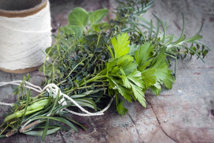 Savoir maigrir plantes et herbes aromatiques 1 2 for Maigrir avec des plantes